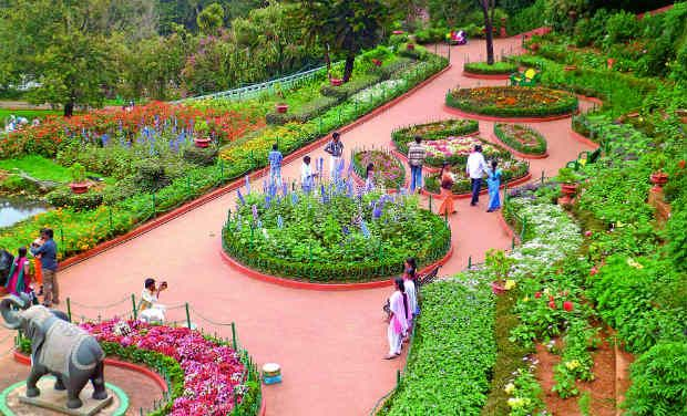 dc-ooty-26a_0